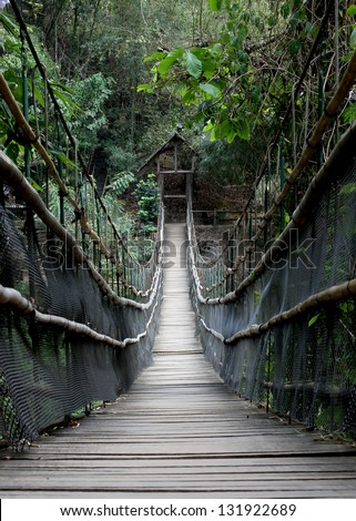 Rope walkway through the treetops in a rain forest - stock photo