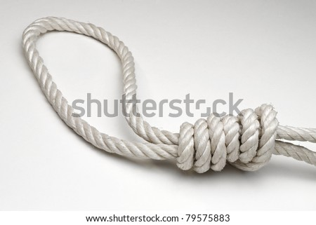 Rope with hangman's noose on white background - stock photo