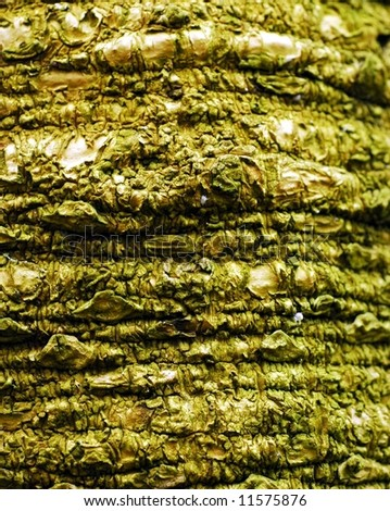 Ropes-Macro of Palm Tree Trunk - stock photo