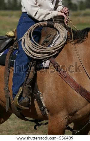 Roping Horse - stock photo