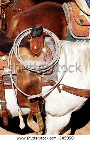 Roping horses wait to participate in rodeo competition. - stock photo