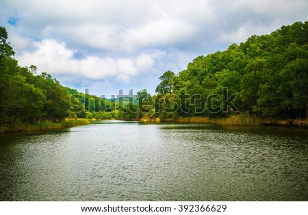 Ropotamo river in Bulgaria. River with thickets of green trees and shrubs along the banks. Summer landscape. - stock photo