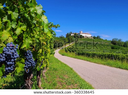 Rosazzo Abbey and vineyard in northern Italy - stock photo