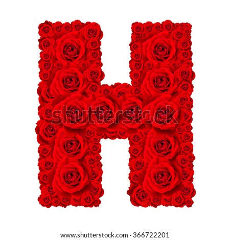 Rose alphabet set - Alphabet capital letter H made from red rose blossoms isolated on white background - stock photo