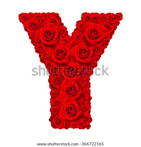 Rose alphabet set - Alphabet capital letter Y made from red rose blossoms isolated on white background - stock photo