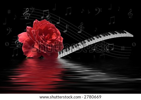 Rose and Keyboard combined with music notes and reflection - stock photo