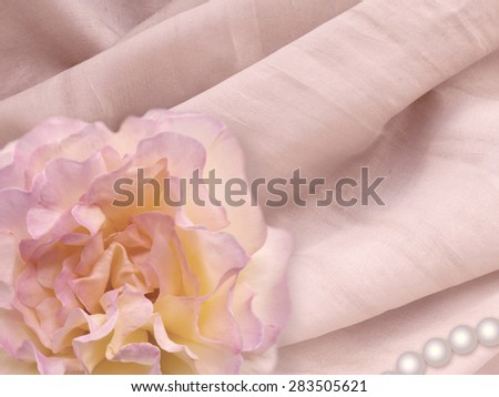 Rose and pearl on the natural silk background. Pink toned image.