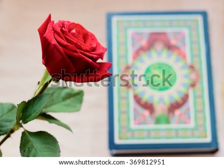 Rose and Quran, the holy book of Islam - stock photo