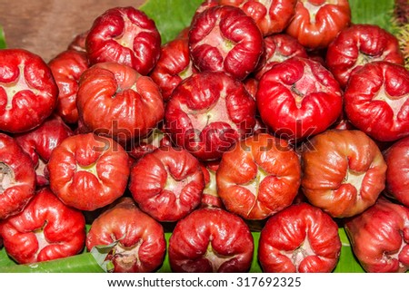 Rose Apple,Chom-poo, exotic fruit from Thailand, Asia - stock photo