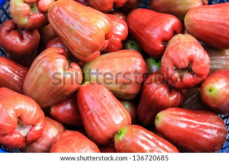 Rose apple in local market - stock photo