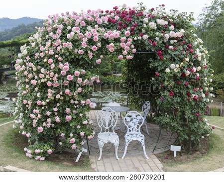 Rose Arch in Japan Garden with white chair set  - stock photo