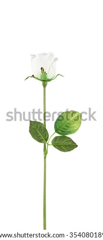 Rose, artificial flowers isolated on white - stock photo