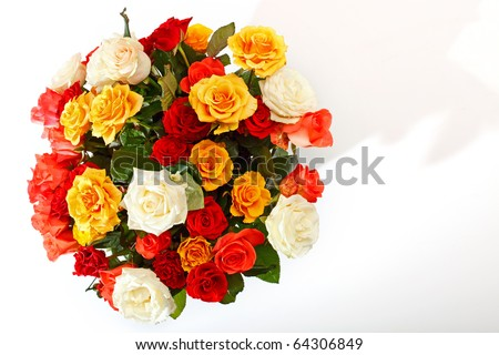 Rose bouquet on the white background - stock photo