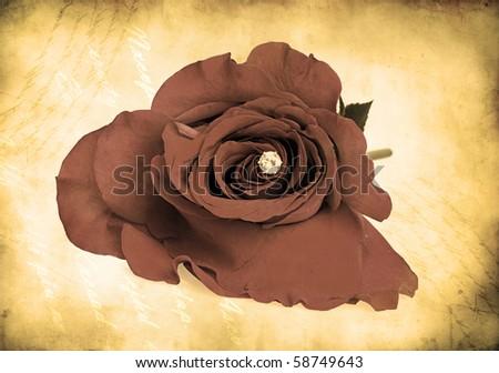 rose bud with gem inside - retro style - stock photo