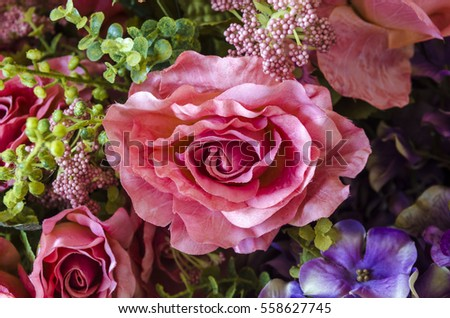 rose flower background for Valentine's Day