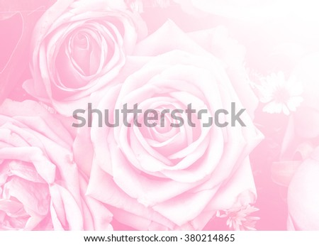 rose flower pattern background color filters design - stock photo