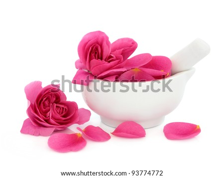 Rose flower petals in a porcelain mortar with pestle and scattered isolated over white background. Rosa rugosa. - stock photo