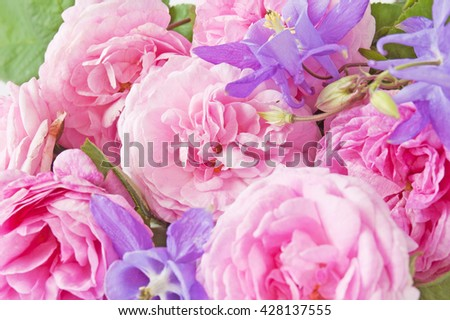 Rose flowers and bluebells closeup background