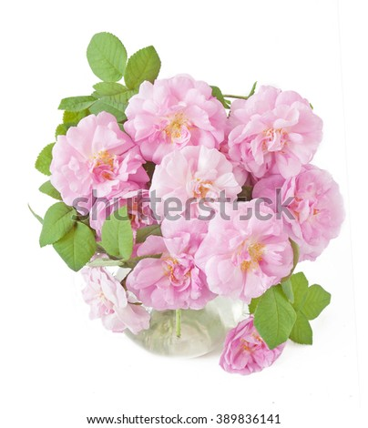 Rose flowers bunch in vase isolated on white background