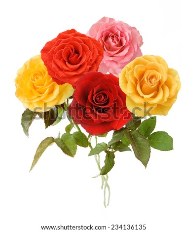 Rose flowers bunch isolated on white background  - stock photo