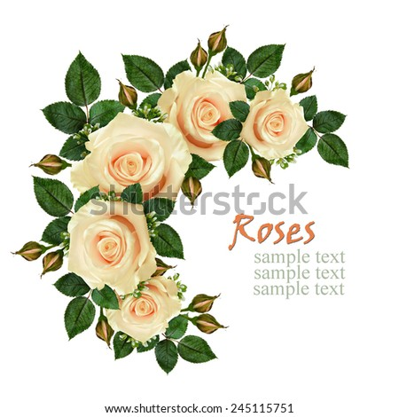 Rose flowers frame on white background - stock photo