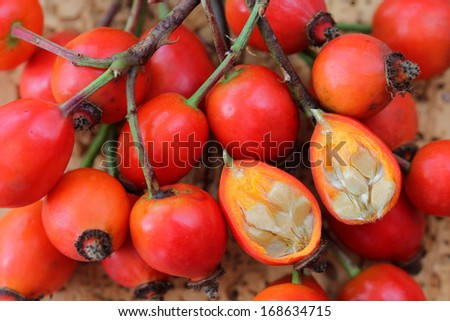 Rose hip flowers cut in half on a wooden background - stock photo
