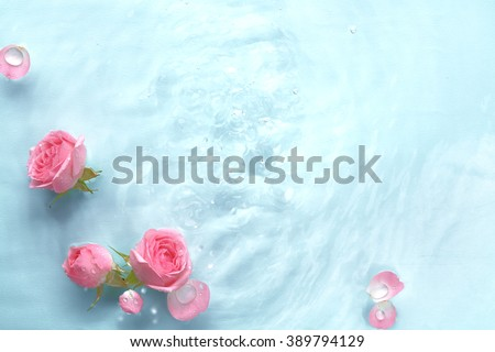 Rose in water with soft silk - stock photo