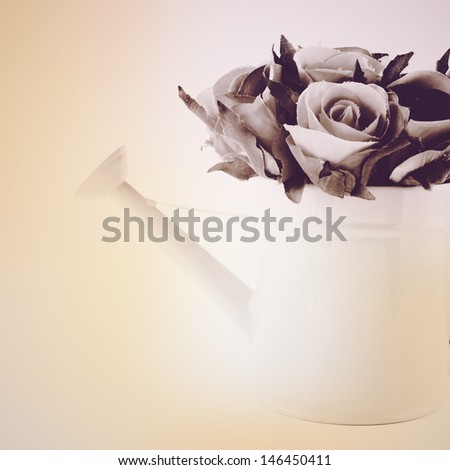 Rose in watering can with retro filter effect  - stock photo