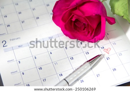rose on calendar page showing Febraury 14 Valentine's day - stock photo