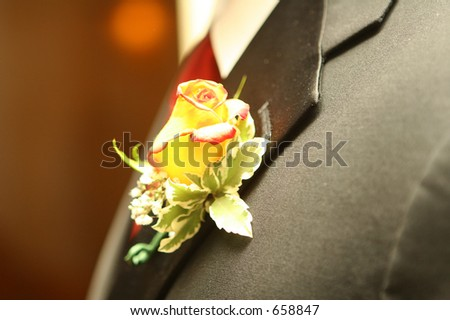 Rose on lapel