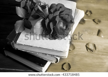 Rose on the book in the wooden background