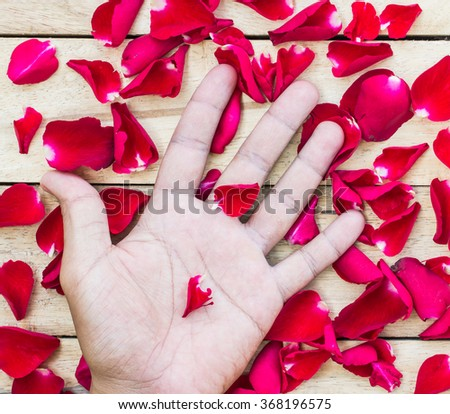Rose Petals Border and hand on a wooden table - stock photo