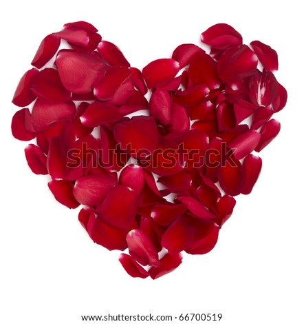 rose petals forming heart shape on white background - stock photo