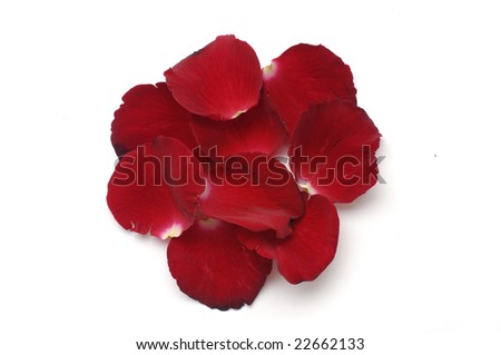 Rose Petals, great for use as design element