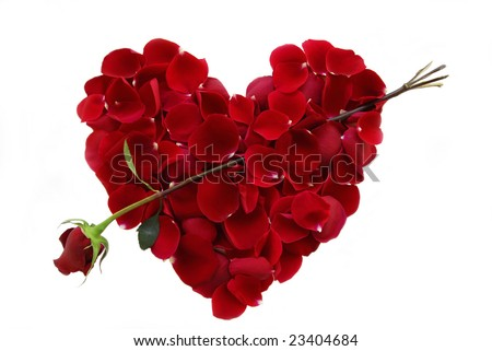 Rose petals in a shape of a heart with Rose Arrow - stock photo