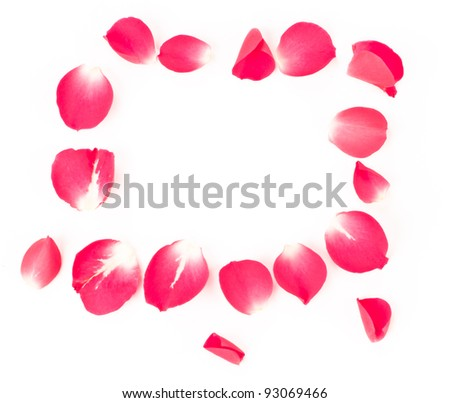rose petals isolated on white with blank space in the middle of the frame - stock photo