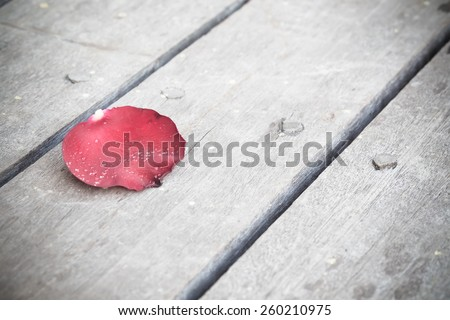 Rose petals on old wood background - stock photo