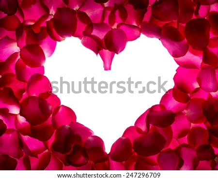 Rose petals shape is heart on white background. Give rose to darling in valentine's day. or send love to marry. - stock photo