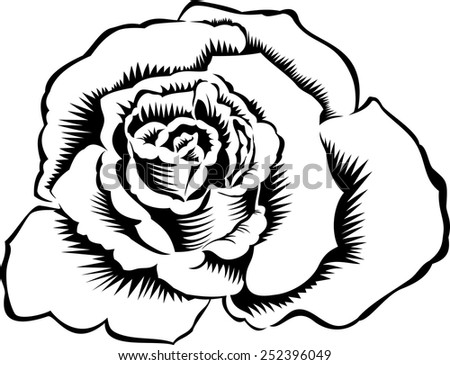 Rose silhouette, isolated on white. Tattoo illustration