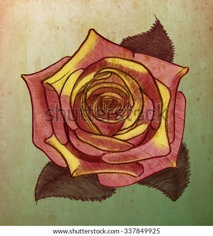 Rosebud. Sketch on the old paper.   - stock photo