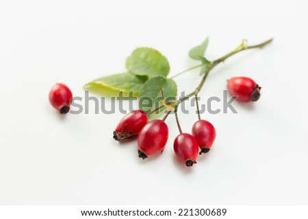 Rosehip (Rosa canina) and leaves - stock photo