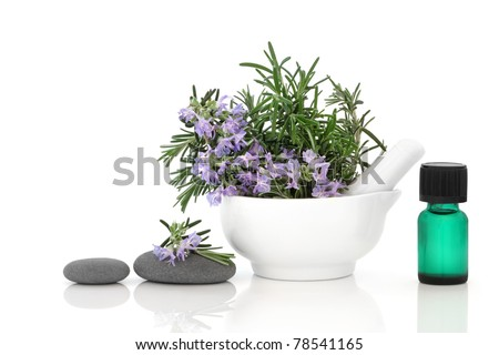 Rosemary herb flower sprigs in a porcelain mortar with pestle, spa stones, and aromatherapy essential oil bottle, isolated over white background. - stock photo