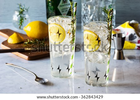 Rosemary Lemon Gin Fizz Alcoholic Cocktail on Bar with Ingredients - stock photo