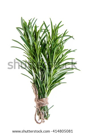 Rosemary sprigs tied in bundle isolated on white background - stock photo