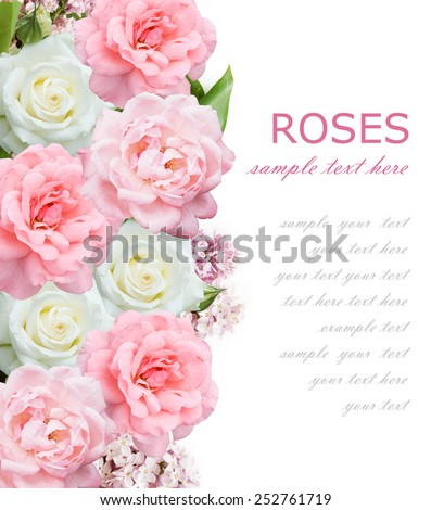 Roses and lilac flowers background isolated on white with sample text