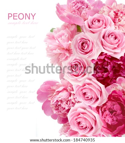 Roses and peony background isolated on white with sample text