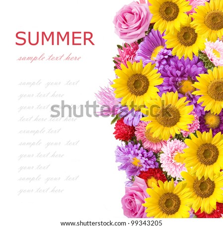 Roses, asters and sunflowers background isolated on white with sample text - stock photo