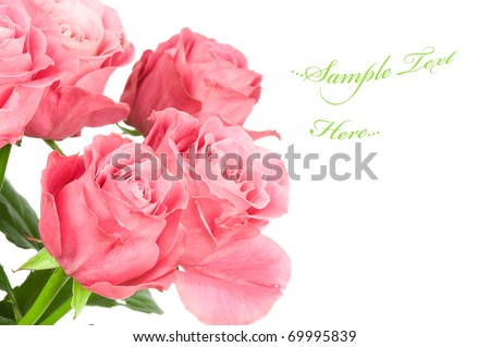 Roses bouquet isolated on white background - stock photo