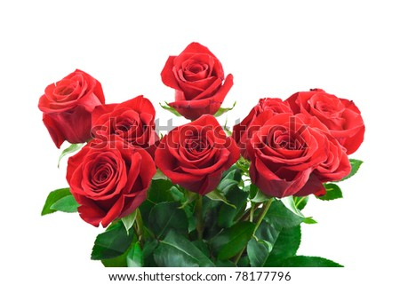 Roses bouquet - isolated on white background