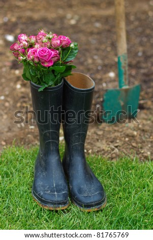 roses in gumboots with a spade in the background